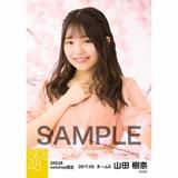 SKE48 2017年3月度 net shop限定個別生写真「さくら」5枚セット 山田樹奈