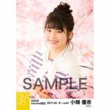 SKE48 2017年3月度 net shop限定個別生写真「さくら」5枚セット 小畑優奈