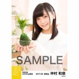 SKE48 2017年3月度 net shop限定個別ランダム生写真5枚セット 仲村和泉