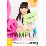 SKE48 2017年4月度 net shop限定個別ランダム生写真5枚セット 上村亜柚香