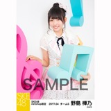 SKE48 2017年4月度 net shop限定個別ランダム生写真5枚セット 野島樺乃