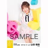 SKE48 2017年4月度 net shop限定個別ランダム生写真5枚セット 山田樹奈