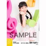 SKE48 2017年4月度 net shop限定個別ランダム生写真5枚セット 深井ねがい