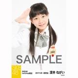 SKE48 2017年5月度 net shop限定個別生写真「コスモスの記憶」衣装5枚セット 深井ねがい