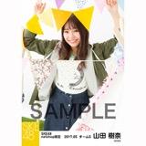 SKE48 2017年5月度 net shop限定個別ランダム生写真5枚セット 山田樹奈