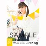 SKE48 2017年5月度 net shop限定個別ランダム生写真5枚セット 竹内彩姫