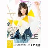 SKE48 2017年5月度 net shop限定個別ランダム生写真5枚セット 水野愛理