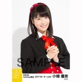 SKE48 2017年5月度 net shop限定個別生写真「青春は恥ずかしい」衣装5枚セット 小畑優奈