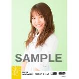 SKE48 2017年7月度 net shop限定個別生写真「ストライプ」5枚セット 山田樹奈