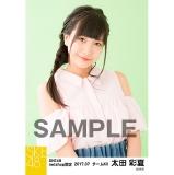 SKE48 2017年7月度 net shop限定個別生写真「ストライプ」5枚セット 太田彩夏