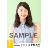 SKE48 2017年7月度 net shop限定個別生写真「ストライプ」5枚セット 菅原茉椰