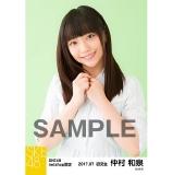 SKE48 2017年7月度 net shop限定個別生写真「ストライプ」5枚セット 仲村和泉