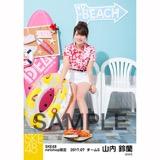SKE48 2017年7月度 net shop限定個別ランダム生写真5枚セット 山内鈴蘭