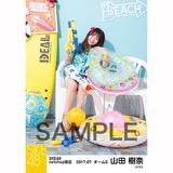 SKE48 2017年7月度 net shop限定個別ランダム生写真5枚セット 山田樹奈