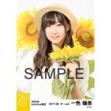 SKE48 2017年8月度 net shop限定個別生写真「ひまわり畑」5枚セット 一色嶺奈