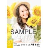 SKE48 2017年8月度 net shop限定個別生写真「ひまわり畑」5枚セット 犬塚あさな