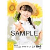 SKE48 2017年8月度 net shop限定個別生写真「ひまわり畑」5枚セット 上村亜柚香