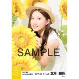 SKE48 2017年8月度 net shop限定個別生写真「ひまわり畑」5枚セット 北川綾巴