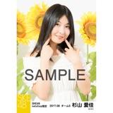 SKE48 2017年8月度 net shop限定個別生写真「ひまわり畑」5枚セット 杉山愛佳