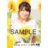SKE48 2017年8月度 net shop限定個別生写真「ひまわり畑」5枚セット 山内鈴蘭