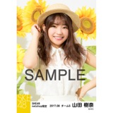 SKE48 2017年8月度 net shop限定個別生写真「ひまわり畑」5枚セット 山田樹奈