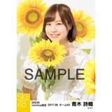 SKE48 2017年8月度 net shop限定個別生写真「ひまわり畑」5枚セット 青木詩織