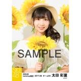 SKE48 2017年8月度 net shop限定個別生写真「ひまわり畑」5枚セット 太田彩夏