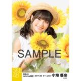 SKE48 2017年8月度 net shop限定個別生写真「ひまわり畑」5枚セット 小畑優奈