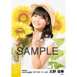 SKE48 2017年8月度 net shop限定個別生写真「ひまわり畑」5枚セット 北野瑠華