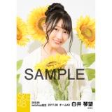 SKE48 2017年8月度 net shop限定個別生写真「ひまわり畑」5枚セット 白井琴望