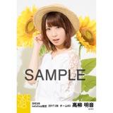 SKE48 2017年8月度 net shop限定個別生写真「ひまわり畑」5枚セット 高柳明音