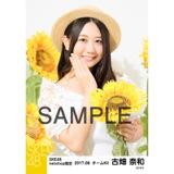 SKE48 2017年8月度 net shop限定個別生写真「ひまわり畑」5枚セット 古畑奈和