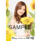 SKE48 2017年8月度 net shop限定個別生写真「ひまわり畑」5枚セット 木本花音