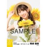 SKE48 2017年8月度 net shop限定個別生写真「ひまわり畑」5枚セット 熊崎晴香