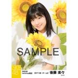 SKE48 2017年8月度 net shop限定個別生写真「ひまわり畑」5枚セット 後藤楽々