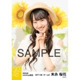 SKE48 2017年8月度 net shop限定個別生写真「ひまわり畑」5枚セット 末永桜花