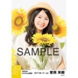 SKE48 2017年8月度 net shop限定個別生写真「ひまわり畑」5枚セット 菅原茉椰