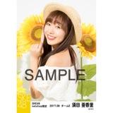 SKE48 2017年8月度 net shop限定個別生写真「ひまわり畑」5枚セット 須田亜香里