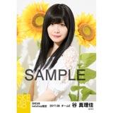 SKE48 2017年8月度 net shop限定個別生写真「ひまわり畑」5枚セット 谷真理佳