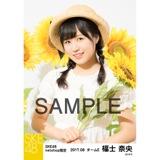SKE48 2017年8月度 net shop限定個別生写真「ひまわり畑」5枚セット 福士奈央