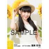 SKE48 2017年8月度 net shop限定個別生写真「ひまわり畑」5枚セット 渥美彩羽