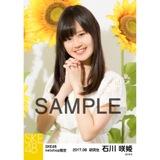 SKE48 2017年8月度 net shop限定個別生写真「ひまわり畑」5枚セット 石川咲姫