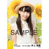 SKE48 2017年8月度 net shop限定個別生写真「ひまわり畑」5枚セット 井上瑠夏