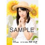 SKE48 2017年8月度 net shop限定個別生写真「ひまわり畑」5枚セット 大芝りんか