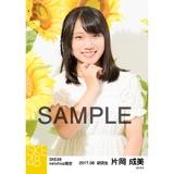 SKE48 2017年8月度 net shop限定個別生写真「ひまわり畑」5枚セット 片岡成美