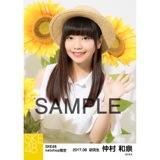 SKE48 2017年8月度 net shop限定個別生写真「ひまわり畑」5枚セット 仲村和泉