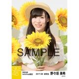 SKE48 2017年8月度 net shop限定個別生写真「ひまわり畑」5枚セット 野々垣美希