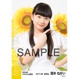 SKE48 2017年8月度 net shop限定個別生写真「ひまわり畑」5枚セット 深井ねがい