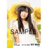SKE48 2017年8月度 net shop限定個別生写真「ひまわり畑」5枚セット 矢作有紀奈