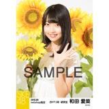 SKE48 2017年8月度 net shop限定個別生写真「ひまわり畑」5枚セット 和田愛菜